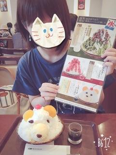 image-b1508.jpeg